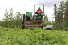 Kunniakirja Matti Veijola Kuva Tuomo Seppänen